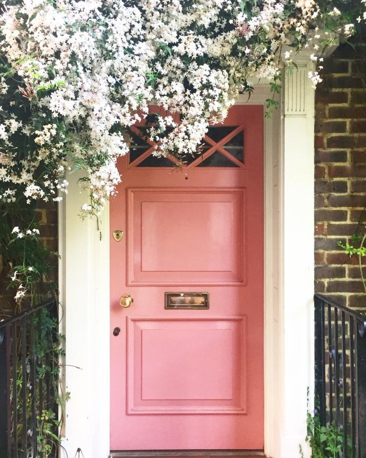 Holland Park pink door jasmine